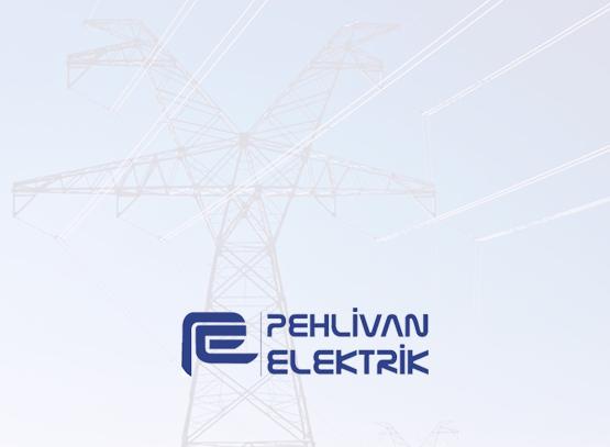 Pehlivan Elektrik Logo / JPG